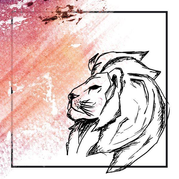 grafica leone