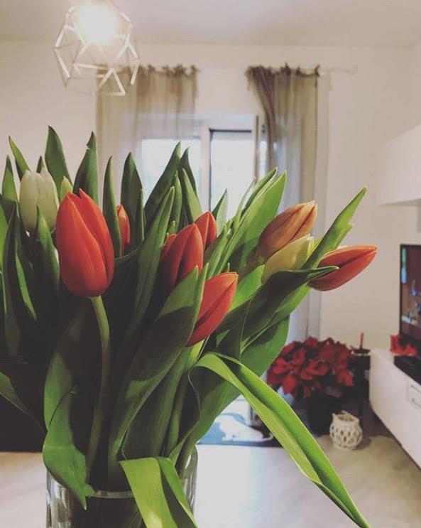 tulipani come arredo di interni