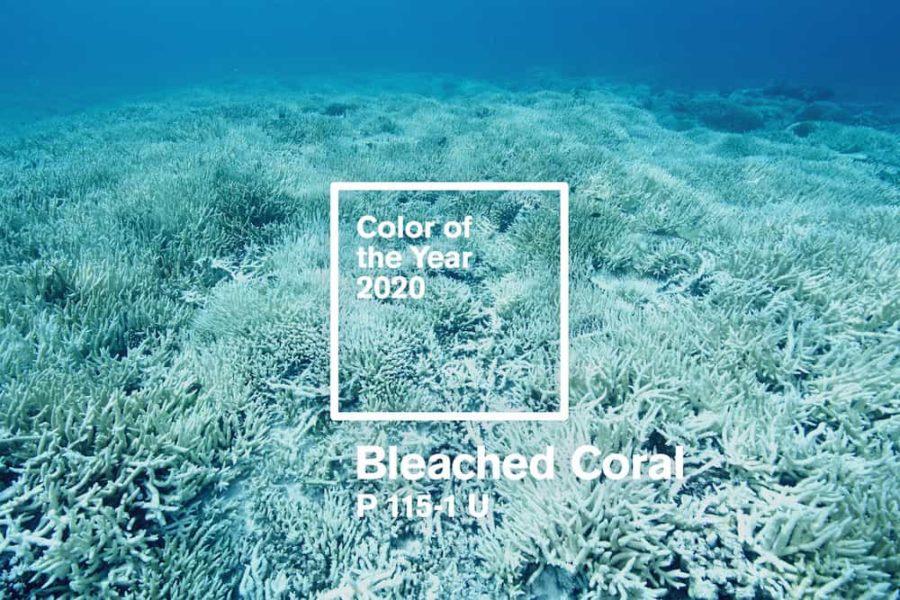 colore dell'anno 2020