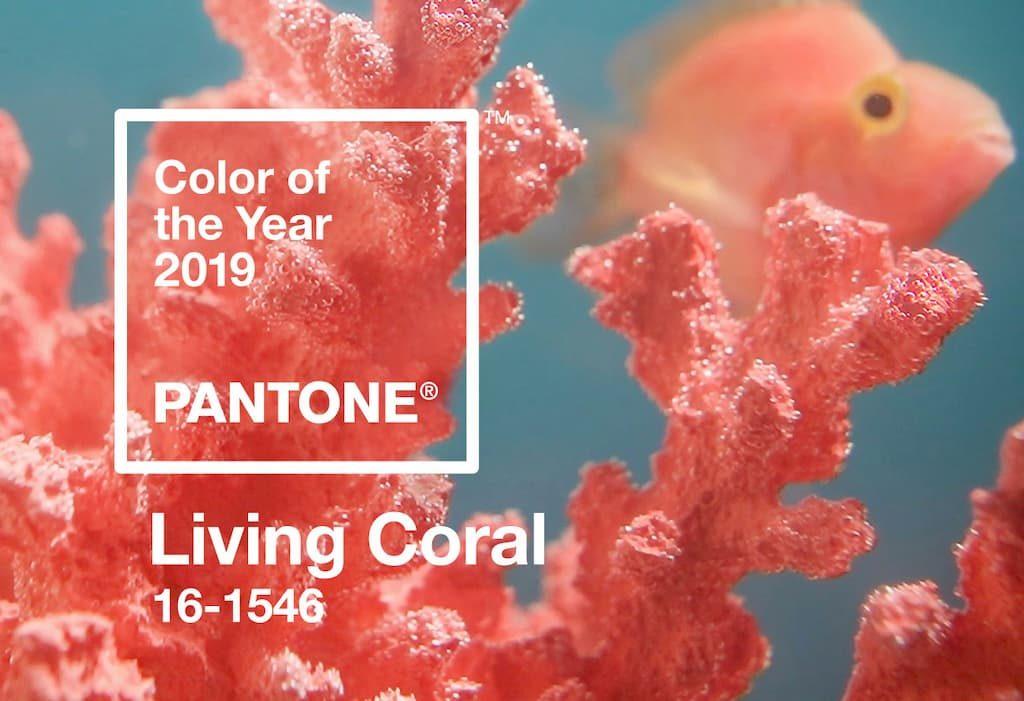 living color pantone colore dell'anno 2019
